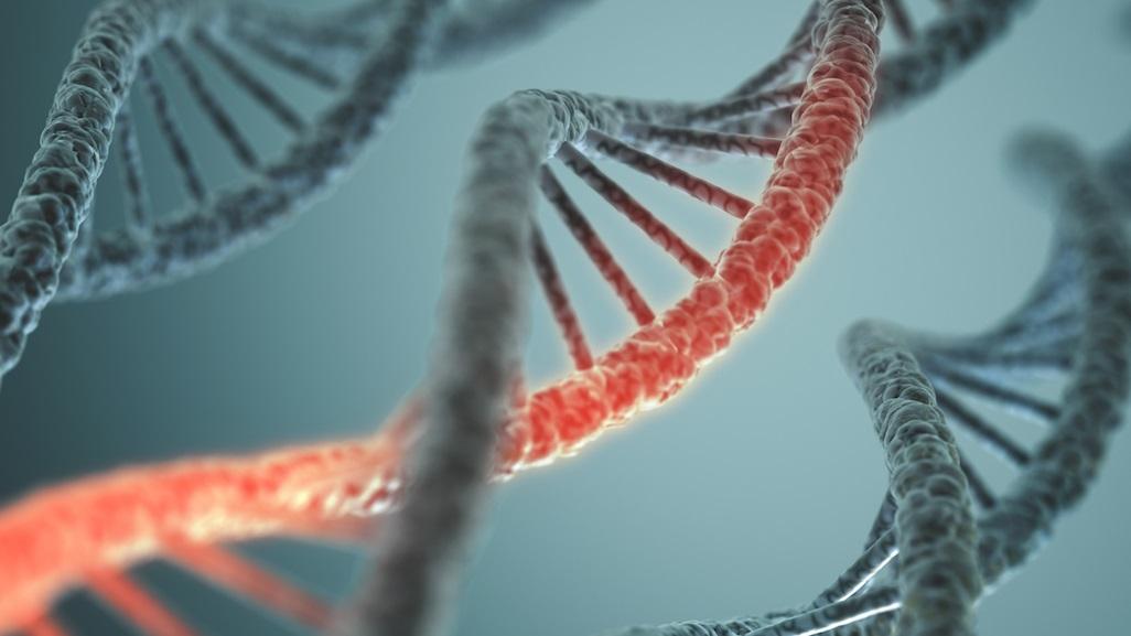 """Cientistas criam célula viva com DNA """"alienígena"""""""