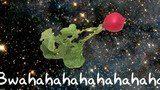 thumb160x_deep-space-1-1024x7681