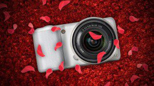 0800-camera-buying-guide-dachis