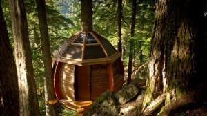 HemLoft, casinha na árvore.