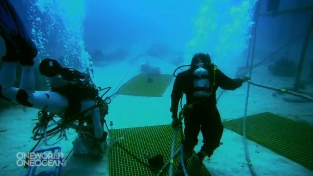 Embaixo d'água.