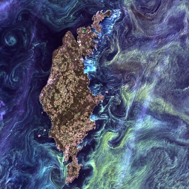 Van Gogh from Space