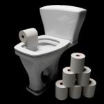 Vaso sanitário e papel higiênico