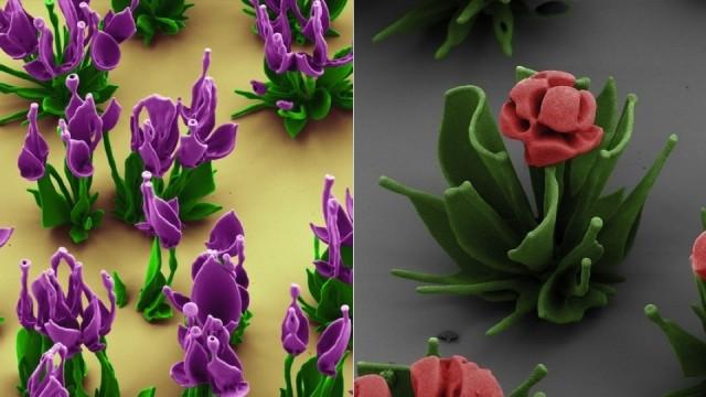micro-flower
