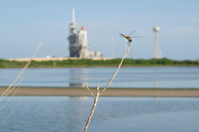 STS-135 Launch Countdown