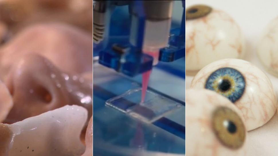É assim que impressoras 3D estão produzindo olhos, ossos e vasos sanguíneos