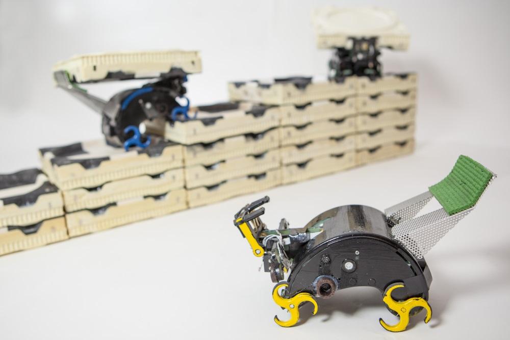 bots autonomos (2)