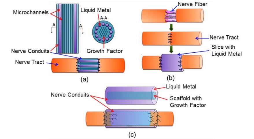 liquid metal nerve