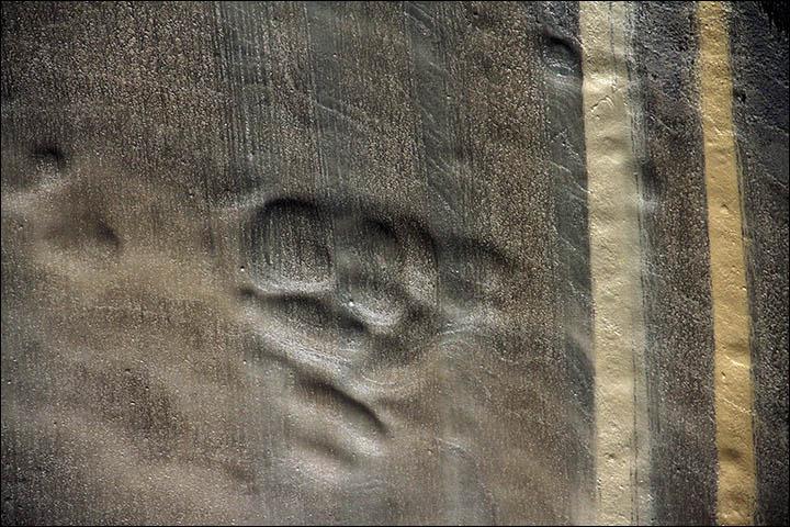 buraco na siberia (5)
