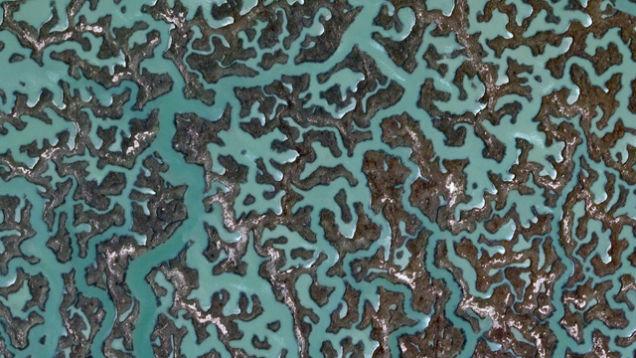 historia camuflagem (12)