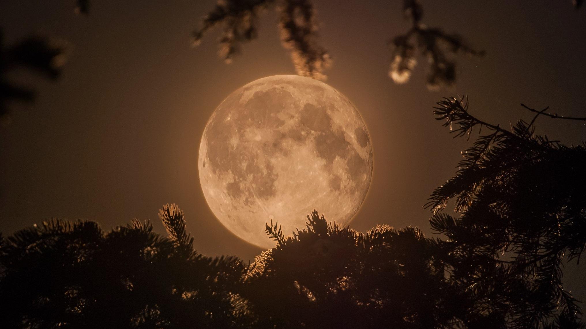 Реальные фото луны из космоса стоит