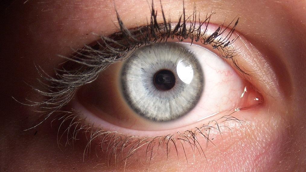 O que são aquelas pequenas manchas e pontos brancos que flutuam em sua visão?