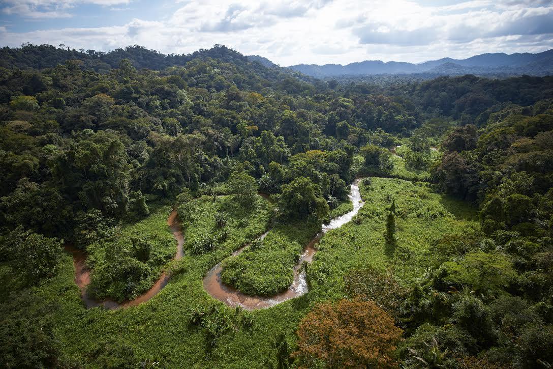 Lendária civilização perdida é encontrada embaixo de uma floresta em Honduras