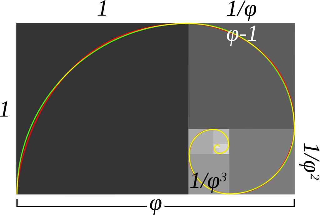 Espiral aurea