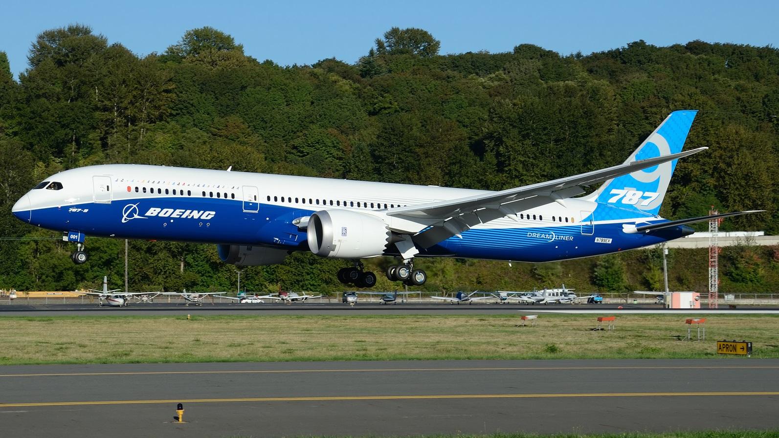 Boeing 787 Dreamliner em voo (3)