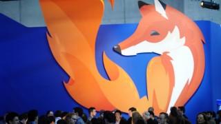 Firefox e raposa