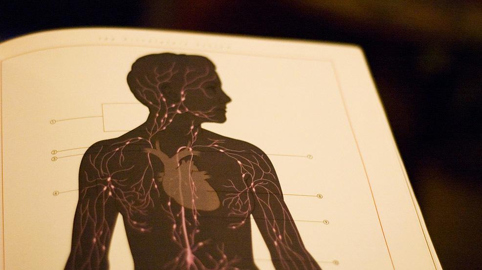 Como cientistas tentam hackear seu sistema nervoso para combater doenças crônicas