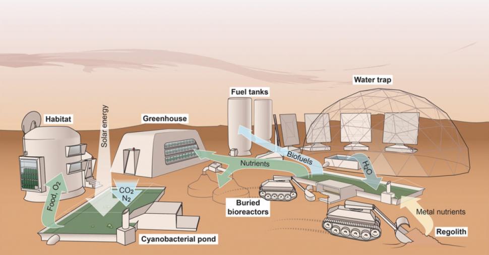 Renderização de um sistema de suporte à vida baseado na vida biológica da cyanobacteria em Marte. Crédito: Verseux et al. 2015