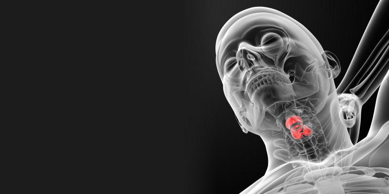 Conheça as primeiras cordas vocais feitas em um laboratório