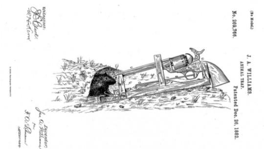 patente-ratoeira