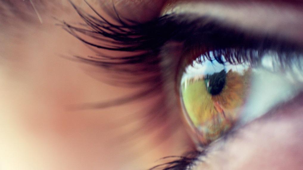 23 fatos sobre seus olhos (e o que pode dar errado com eles)