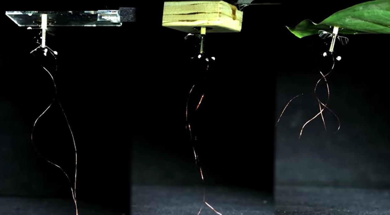 droneroboticos