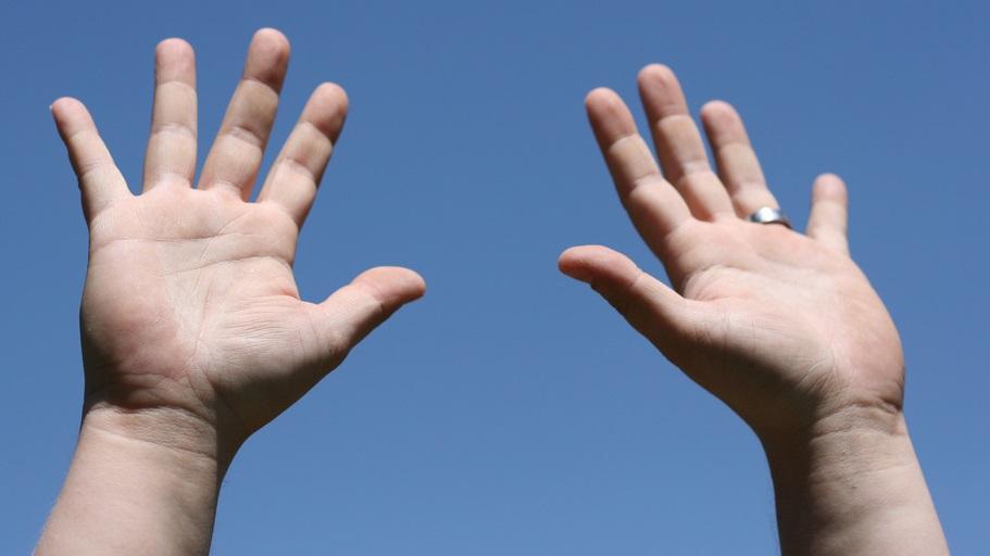 Por que os dedos das nossas mãos têm tamanhos diferentes?