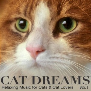 cat-dreams-album