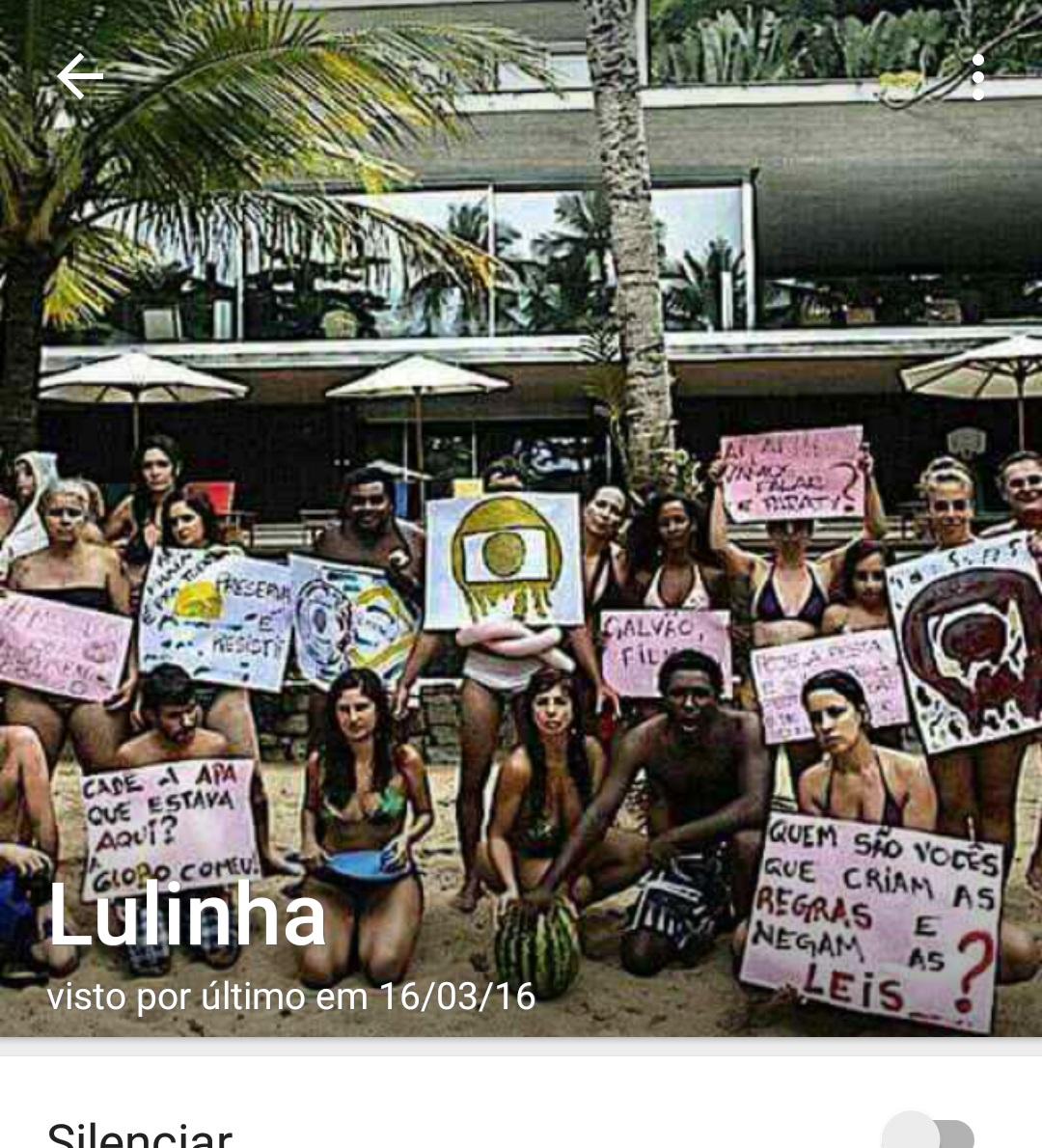 lulinha whatsapp 2