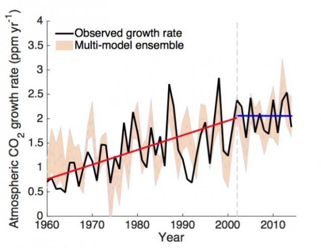 crescimento-carbono