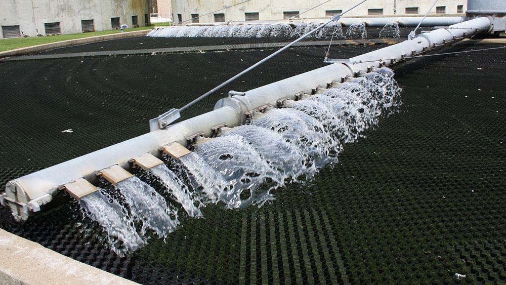 Pesquisadores utilizam bactéria para tratar água e gerar energia ao mesmo tempo