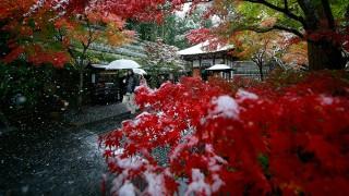 toquio-neve_0002_toquio-13