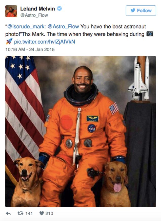 astronauta-cachorro