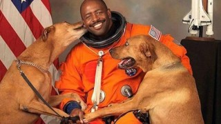 cachorros-e-astronauta