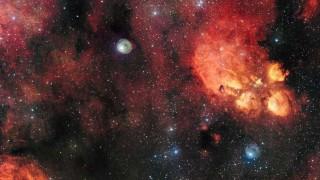 nebulosa-gato
