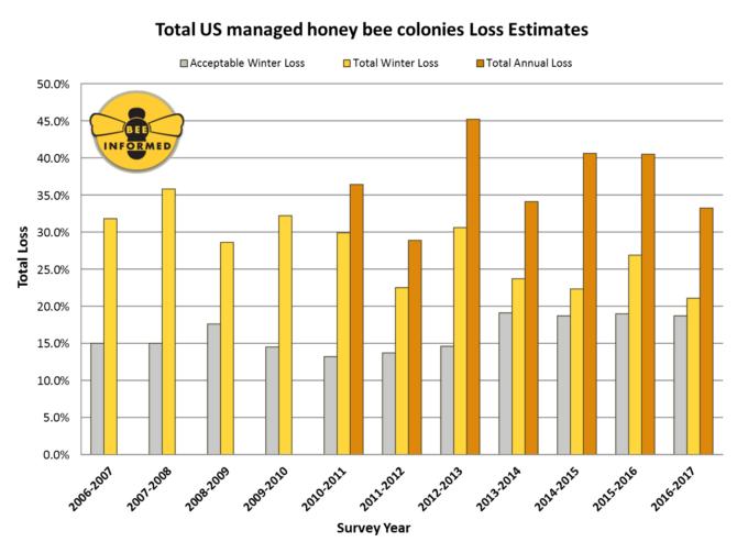 abelhas-grafico