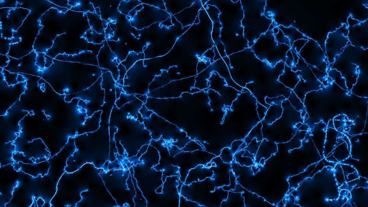 Trinta e três físicos famosos assinam uma raivosa carta sobre a origem do universo