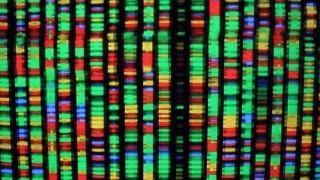edicao-genetica