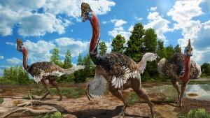 Este recém-descoberto dinossauro se parece com um casuar