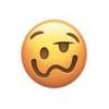 emoji_0024_Captura de Tela 2017-08-06 às 14.11.18