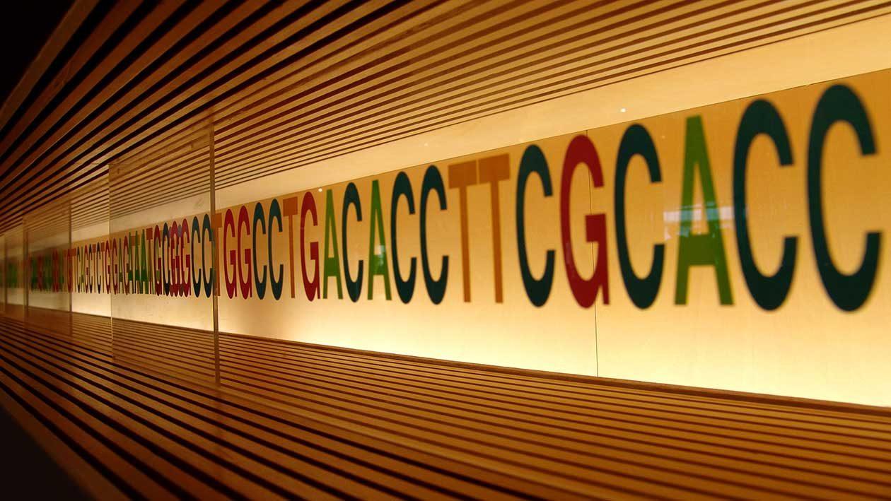 Edição temporária de RNA pode revolucionar o tratamento de doenças genéticas