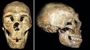 Estudo mostra como neandertais com deficiências sobreviviam com auxílio social