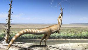 Este adorável dinossauro com penas apresentava uma máscara parecida com as de guaxinins