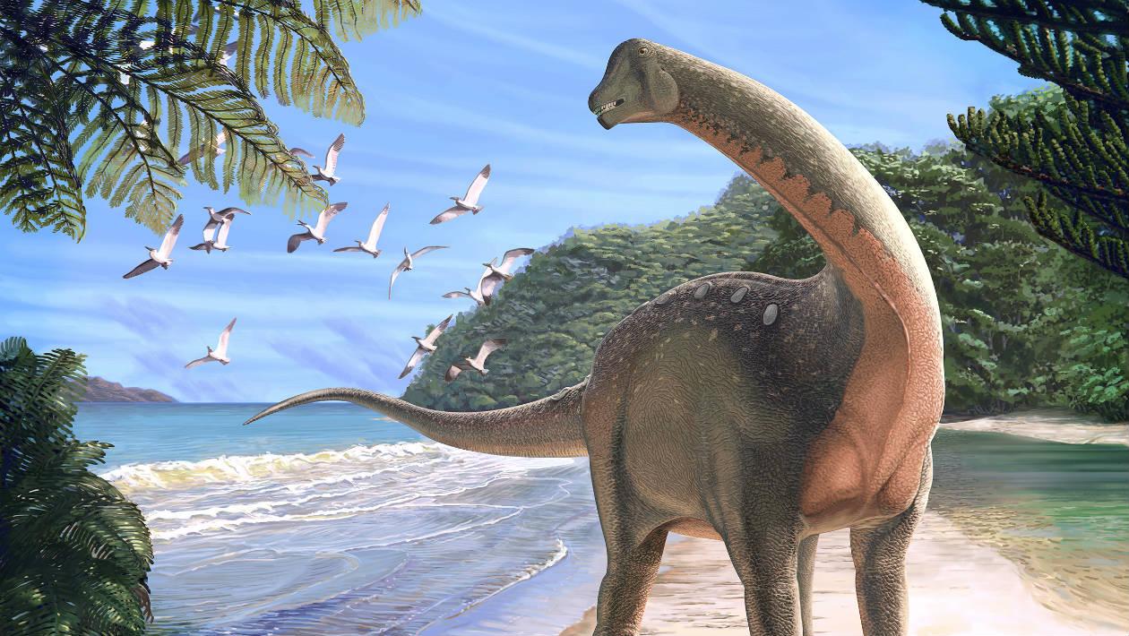 Nova espécie de titanossauro africano resolve mistério do período Cretáceo