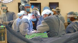 transplante-penis-escroto