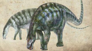 dinossauro-china