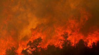 Firefighters Battle Biggest Ever Arizona Blaze