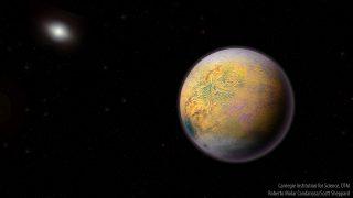 planeta nove destaque