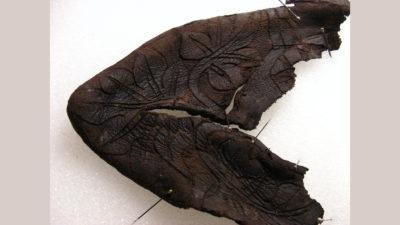 pedaço de couro marrom escuro com desenhos de folhas e flores em alto relevo ainda visíveis