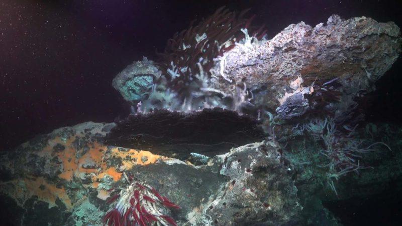 Imagem dos respiradouros vulcânicos nas profundidas do Oceano Pacífico